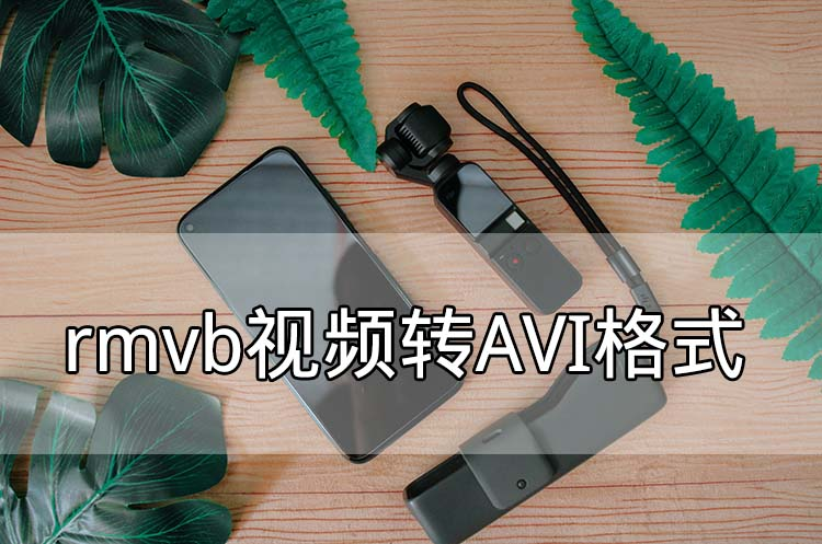 rmvb视频转AVI格式